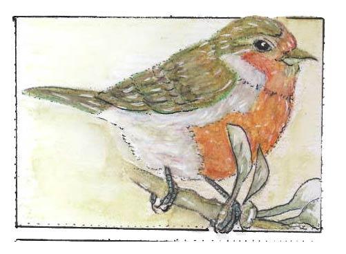Robin by Melissa Severance